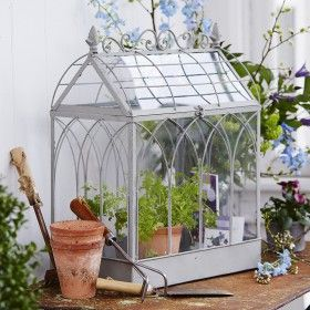 Small indoor greenhouse from isabella smith love the for How to make a small indoor greenhouse