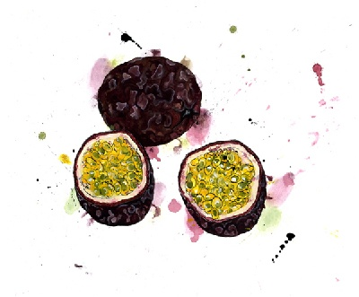 Will's Art Warehouse - Emma Dibben 'Passion Fruit'.