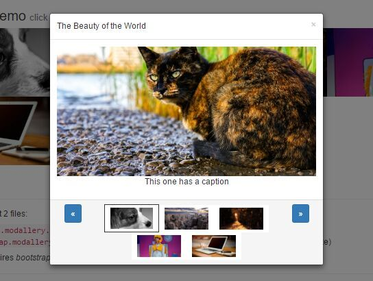Modallery is a lightweight, responsive #jQuery/#Bootstrap lightbox #gallery plugin which displays a group of images in a Bootstrap modal with arrow/keyboard/thumbnail navigation.