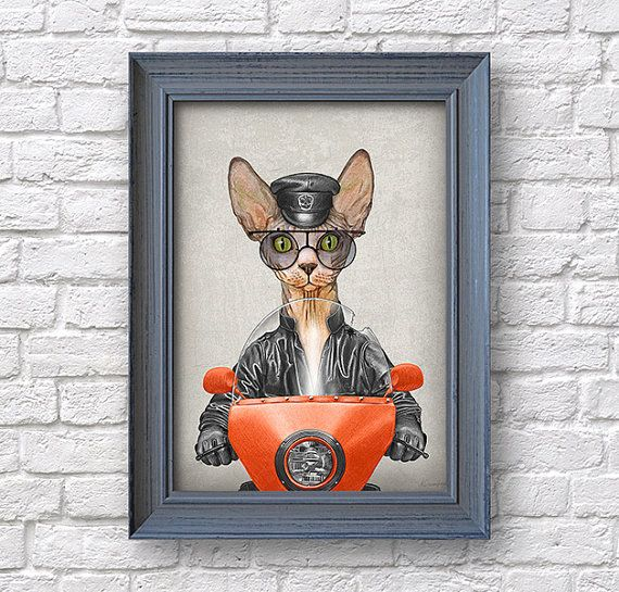 Sphynx Cat illustrated print Cat Biker poster cat gift by Colorus