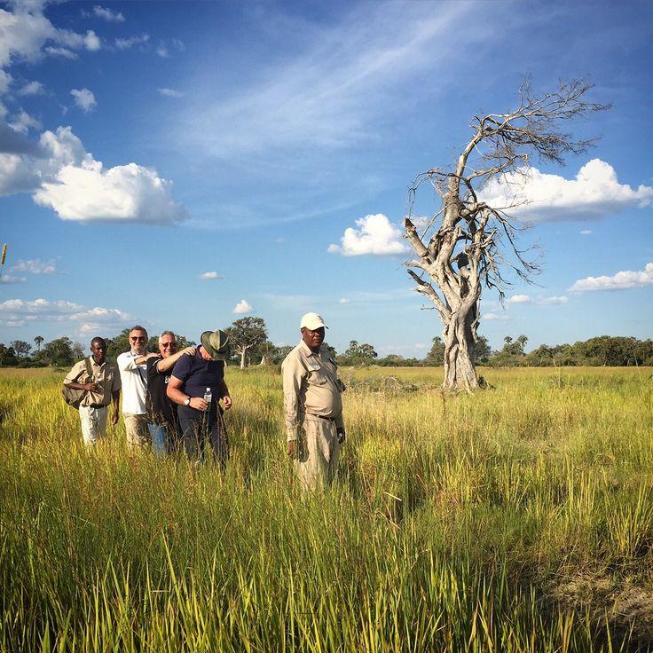 #safari walk #okavangodelta #wanderlust