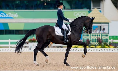 Olympic bronze goes to Desperados FRH and Kristina Bröring-Sprehe! They finished with a score of 87,142. It was a brilliant ride without mistakes. Congrates, Kristina! #outstanding #dressagehorseofworld #rio2016 Photo: Stefan Lafrentz