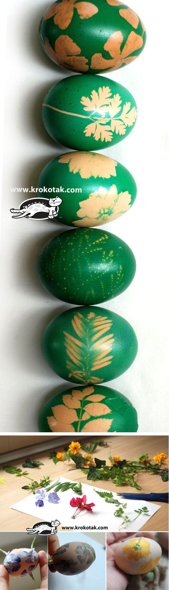 Tradition in green – egg dyeing with grass and flowers
