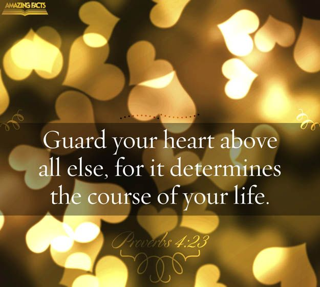 Great Proverbs About Life: Best 25+ Proverbs 4 23 Ideas On Pinterest