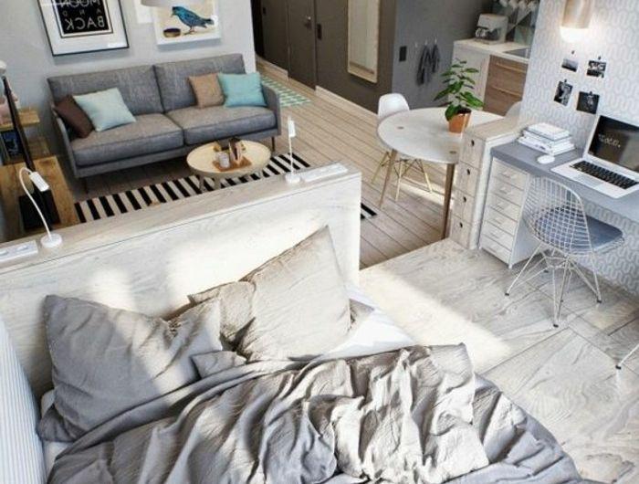 aménager-un-studio-de-20m2-sol-en-planches-en-bois-canape-gris-anthracite-mubles-de-salon