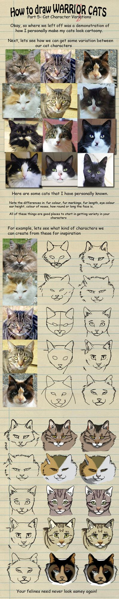 How to draw Warrior Cats pt 5 by heylorlass on deviantART
