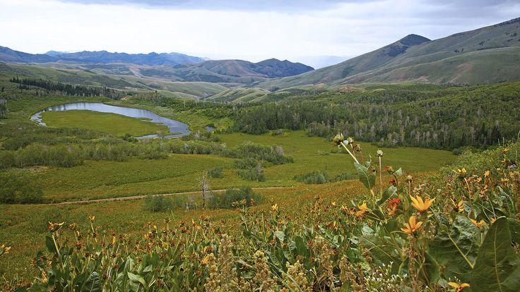 Jarbridge, Nevada (Elko County)