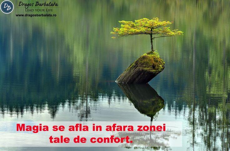 Esti fericit sau confortabil?