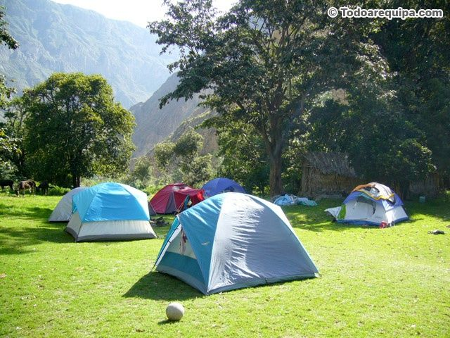 00 pm: Zona de CAMPING For more great camping info go to http://CampDotCom.Com #camping #campinghacks #campingfun