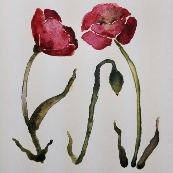 poppies by Amber De Smet 2014