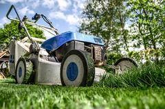 Kosiarka do trawy s- jaką wybrać?