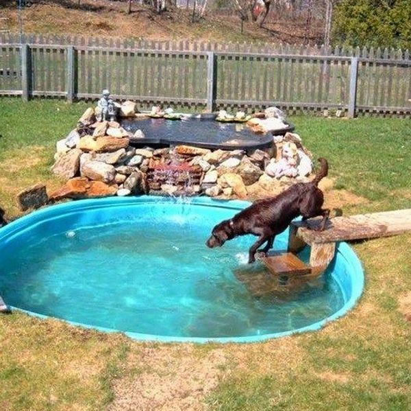 34 Simple Diy Playground Ideas For Dogs Home Design And Interior Dog Pool Dog Playground Dog Backyard