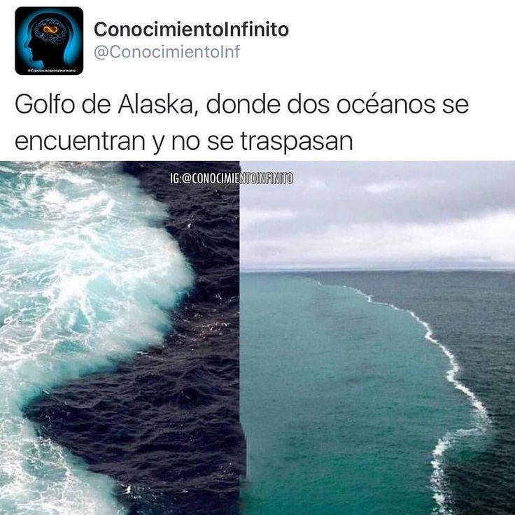En el golfo de Alaska se juntan dos océanos donde el agua no se mezclan el profesor Ken Bruland de ciencias oceánicas de la Universidad de California en Santa Cruz hizo estudio en el cual fue en un barco a explorar este sitio.  Su objetivo principal era instruirse en los remolinos que se formaban en el golfo que se extienden a lo largo de muchos kilómetros estos remolinos llevan grandes cantidades de sedimentos glaciales debido a que estas aguas son originarias de los glaciares de la costa…