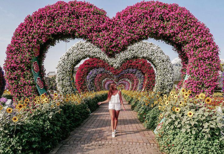 Dubai Miracle Garden in 2020 Dubai, Miracle garden, Long