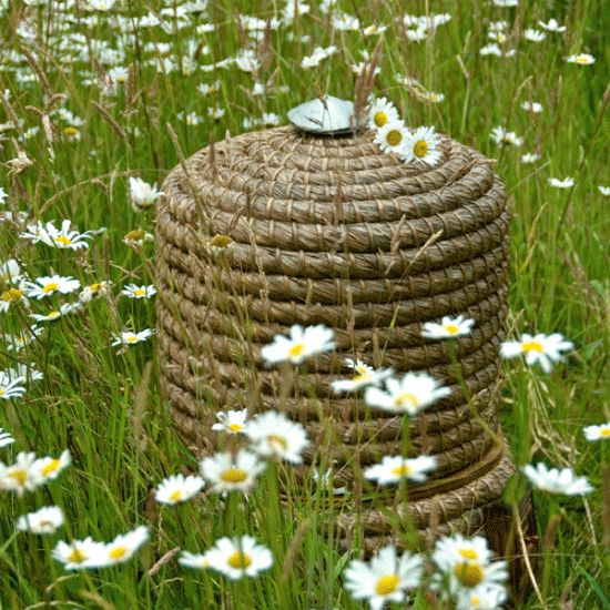 Check for bee swarms | Gardening calender June | housetohome.co.uk
