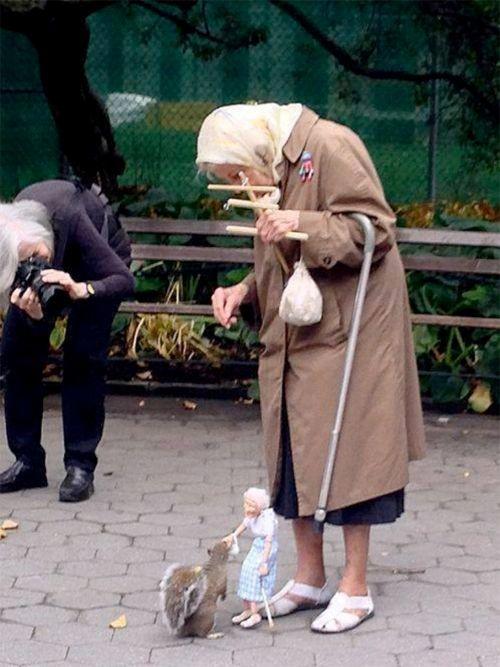 全世界が和む「おばあちゃんと なかの人と リス」 あぁ… ほんわか奇跡の瞬間
