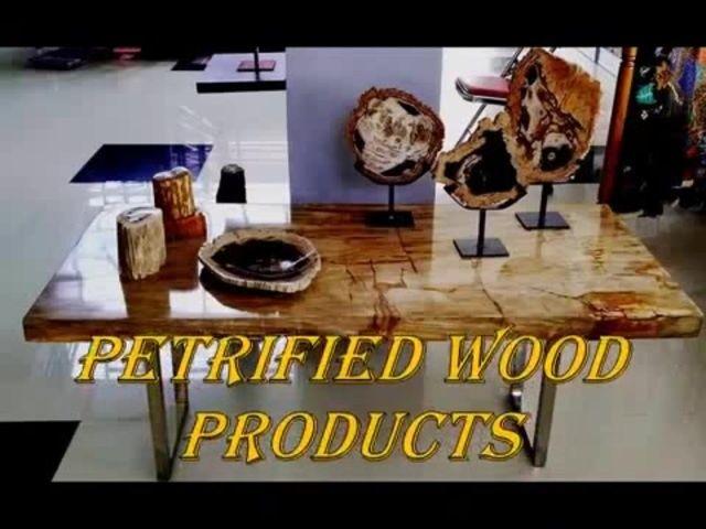 Indonesia Petrified Wood