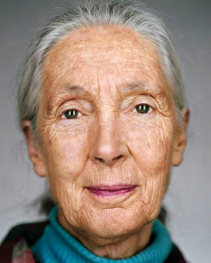 Dr. Jane Goodall, DBE, born Valerie Jane Morris-Goodall; 3 April 1934 is a British primatologist, ethologist, anthropologist, and UN Messenger of Peace. Considered to be the world's foremost expert on chimpanzees, Goodall is best known for her 55-year study of social and family interactions of wild chimpanzees in Gombe Stream National Park, Tanzania. She is the founder of the Jane Goodall Institute and the Roots & Shoots program ...