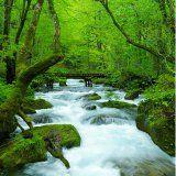 大自然で癒される!マイナスイオンたっぷり♪国内の絶景パワースポット5選