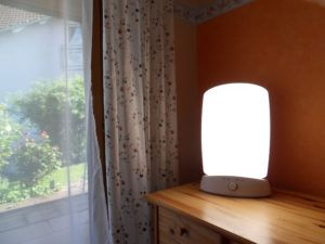 Natural light bulbs for office White Desk Natural Light Bulbs For Office Pinterest Natural Light Bulbs For Office Httpyungchieninfo Pinterest