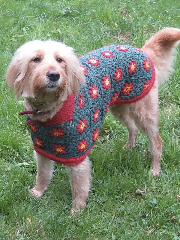 How To Make A Dog Coat Out Of A Sweater