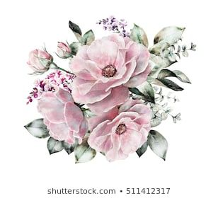 Find stock | Nohat ME | Flowers | Floral illustrations