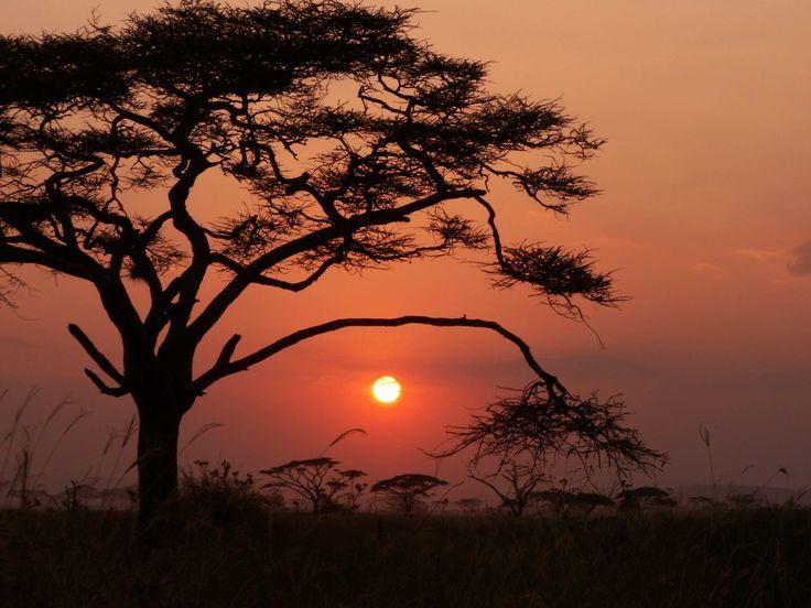 VIAGGIO DI GRUPPO IN AFRICA, KENYA TANZANIA http://www.grandiorizzonti.it/destinazioni/tanzania