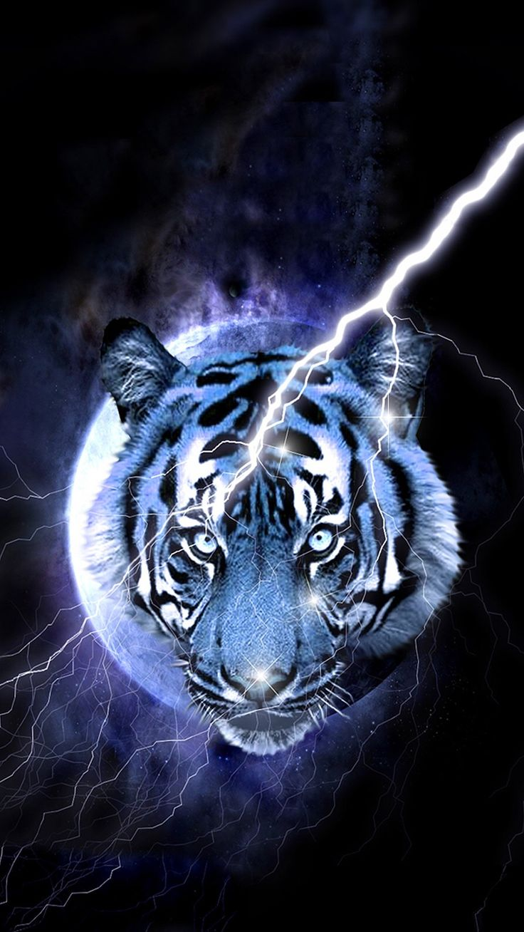 Pin by Christine Raulerson on Projects Pet tiger, Tiger