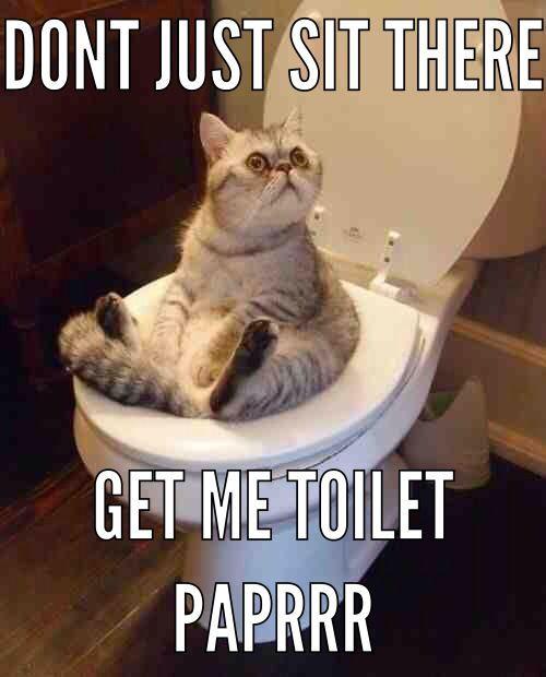 Kitchen Sink Jokes: 65 Best Plumbing Humor Images On Pinterest
