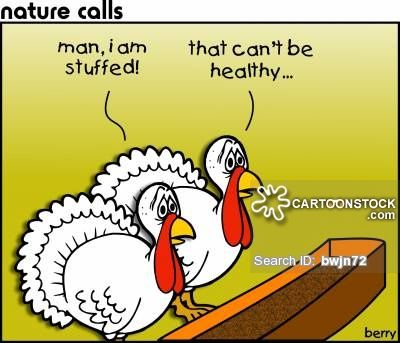 Funny Turkey Pictures Cartoons Jokes And Stories Guy Sports