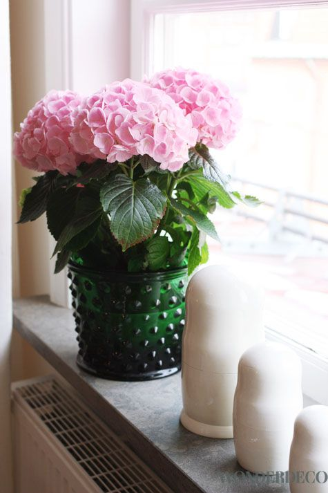 I always have white hydrangeas in this pot, the pink does look lovely with the green too!
