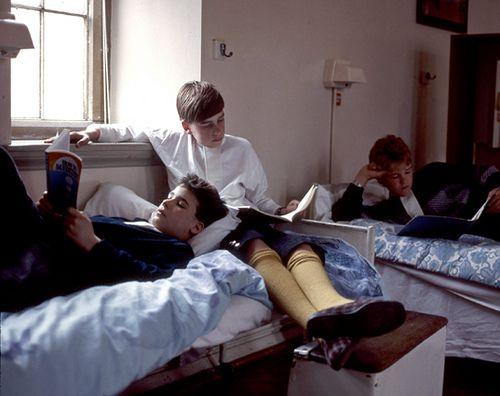 James, Albus and Hugo studying together