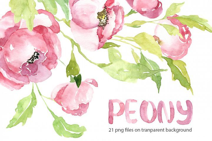 Pink Watercolor Peony Png Collection Free Watercolor Flowers