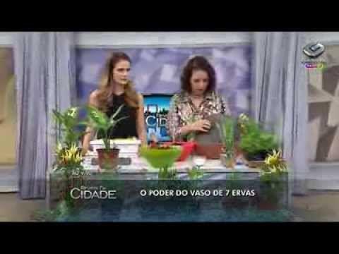Nô Figueiredo ensina como fazer vasos de 7 Ervas