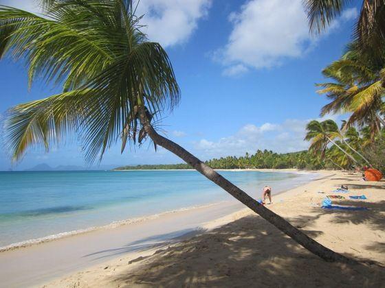 #Martinica - una delle spiagge più belle di Martinica - di Gabry1962