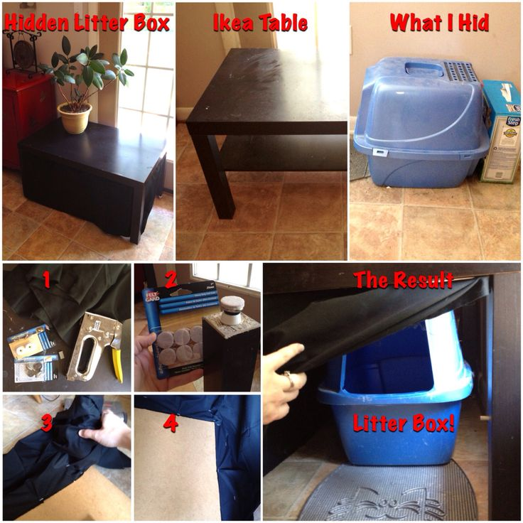 "How To Hide Your ""tall"" Litter Box With A Few Bucks And An"