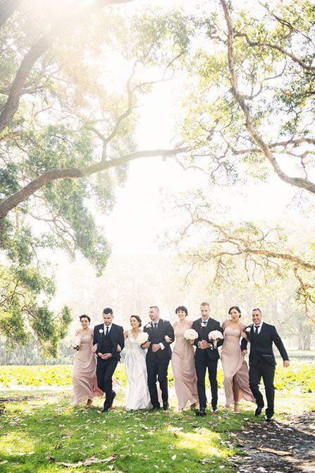 An amazing bridal party shot, back lit to perfection #markjayphotography #sydneyweddingphotographer #weddingphotography #pink #bridesmaid #bridalparty #pose