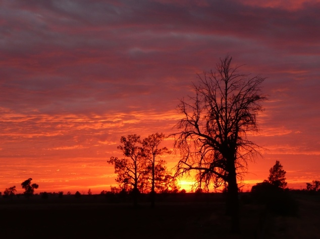 Sunset #4WD #4x4 #Adventure #Aussie #Australian #TV #outdoors #travel #outback #sunset #silhouette #Australia