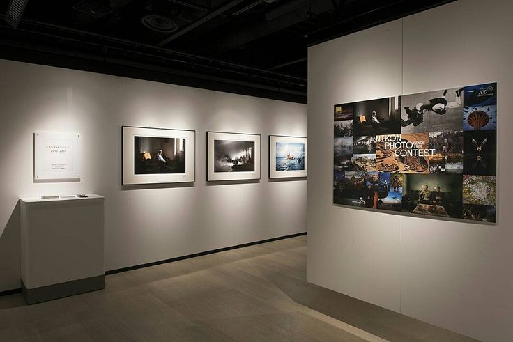 The Nikon Photo Contest 2016-2017 Photo Exhibition opened at Tokyo,Japan . Today, we have some photos for you of the exhibition in Tokyo. Do have a look! . See more award-winning images of Nikon Photo Contest 2016-2017 from the url in our profile ( @nikonphotocontest ). . We will be holding the Nikon Photo Contest 2016-2017 Global Award Photo Exhibition at THE GALLERY at Nikon Plaza Shinjuku in Tokyo, Japan from October 24th to October 30th, 2017. *Closed on Sundays We look forward to your…