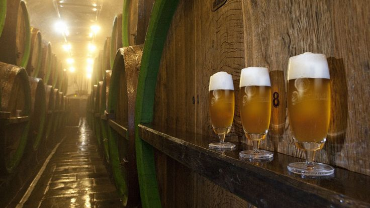 Enjoy a beer tasting in the Pilsner Urquell Brewery during the Romania-Austria-Czech Republic tour starting with September!