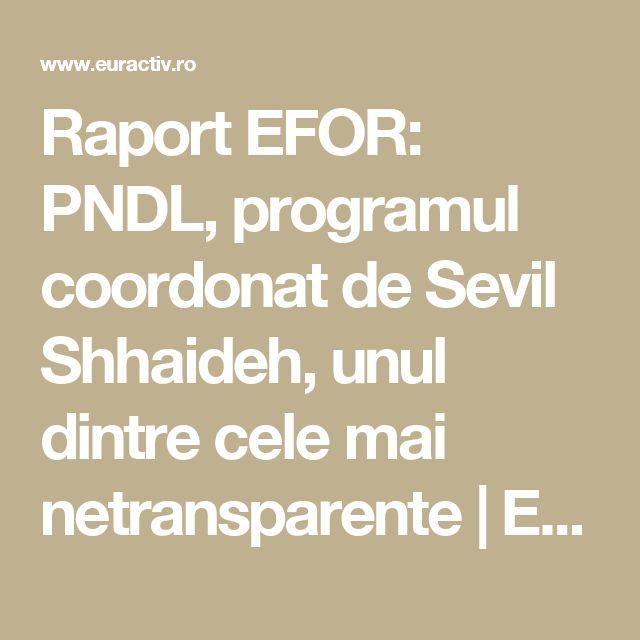 Raport EFOR: PNDL, programul coordonat de Sevil Shhaideh, unul dintre cele mai netransparente | EurActiv