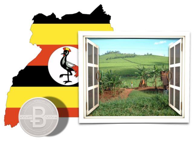 Uganda sería el primer país africano en regular el uso del bitcoin.