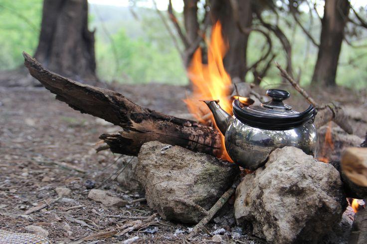 Tea Time @ Camp