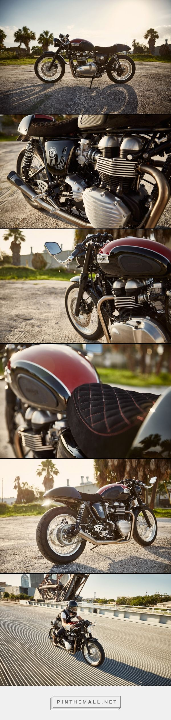 John Paul Michaels' Triumph Thruxton 900 [CFCM]