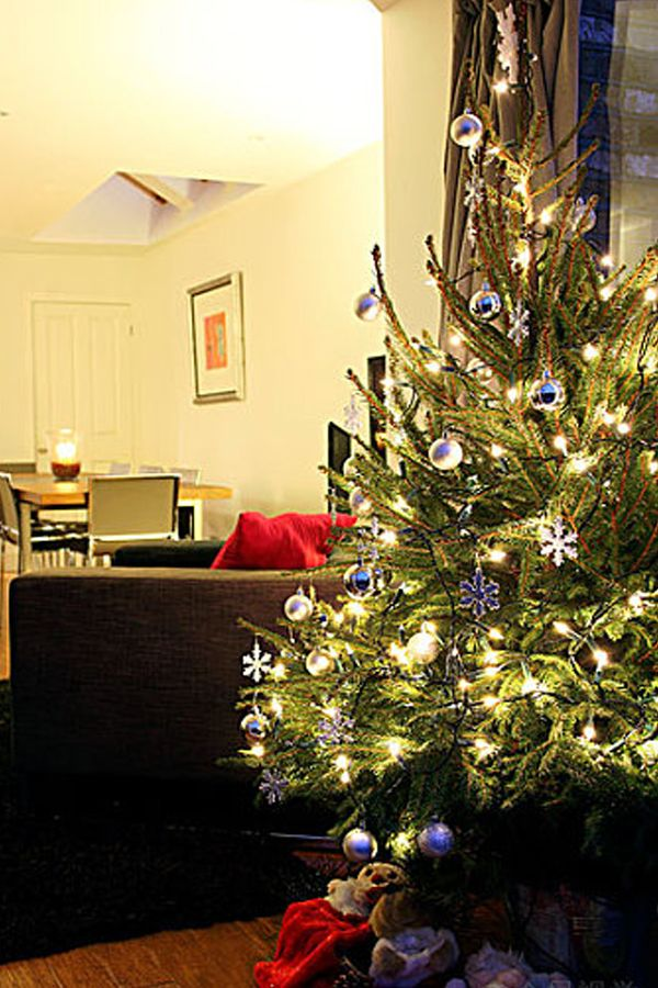 30 Beautiful Christmas Tree Ideas Beautiful Christmas Trees Christmas Decor Diy Indoor Christmas Decorations