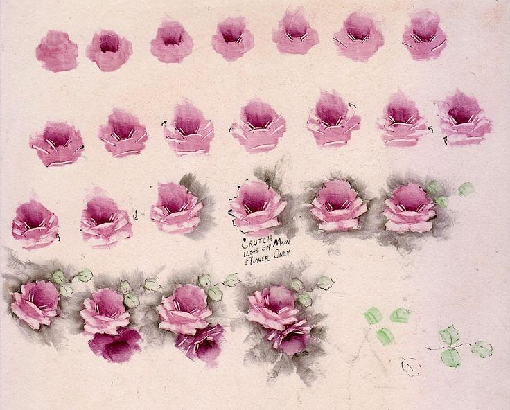 my roses.jpg