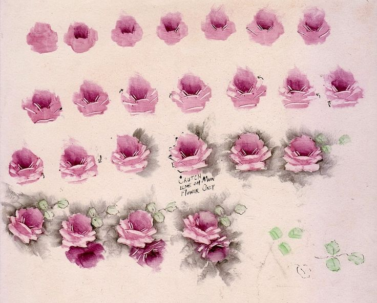 17 best images about old roses on pinterest shabby chic for How to paint a rose step by step