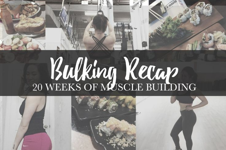 Bulking Recap / 20 Weeks of Muscle Building