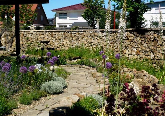 Mediterranes Splittbeet mit Allium und Eremurus   Garten