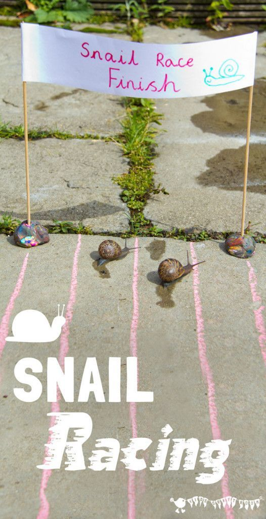 Ready, steady, slow! Use SNAIL RACING to learn SNAIL FACTS. A fun ANIMAL SCIENCE activity for the whole family and a great way for kids to learn about our slimy garden snail friends.